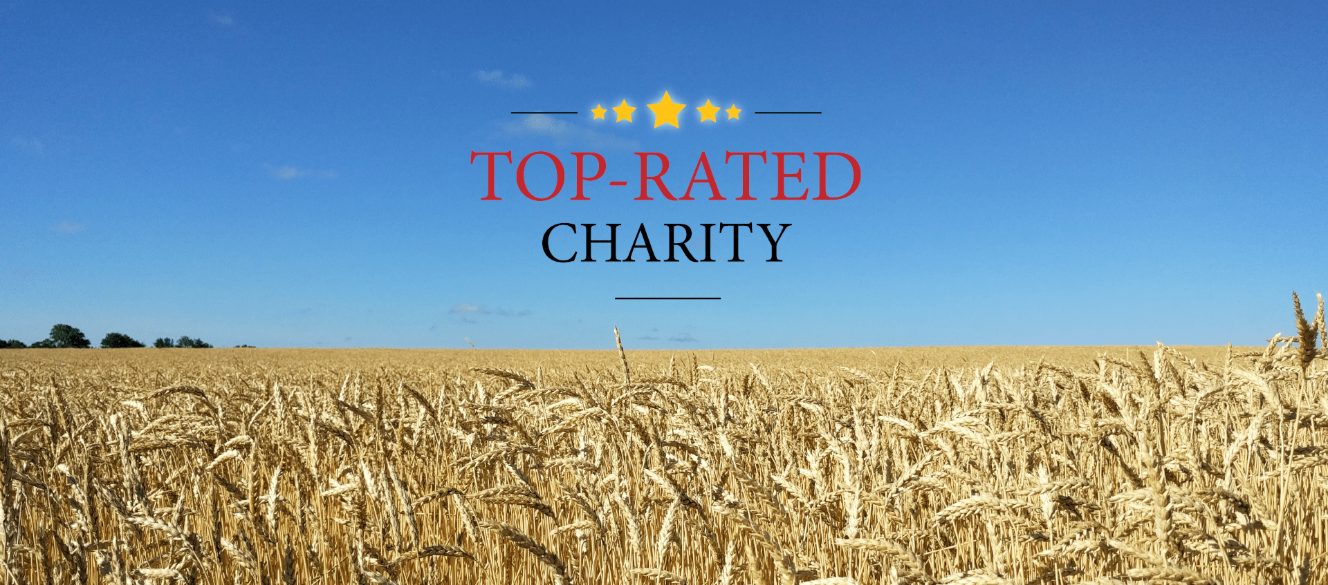Top-Rated Charity